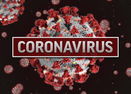 Coronavirus DNA